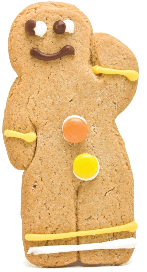 Sorry Mr.Gingerbread Man, Pharaoh Bloomberg has rated you ineffective.